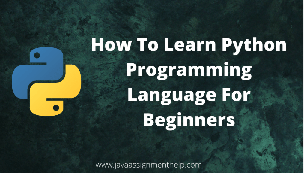 How To Learn Python Programming Language For Beginners